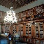 Museo Civico Correr Foto