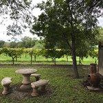 Foto de Val Verde Winery