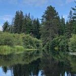 Foto de Algonquin Park Tours