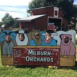 Foto di Milburn Orchards