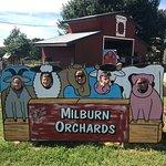 Foto de Milburn Orchards