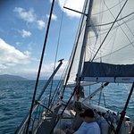 Ocean Free and Ocean Freedom Foto