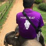 Billede af Ban Ta Klang Elephant Village