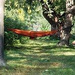 A hammock will bring you a good dream.