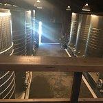 Foto Frog's Leap Winery