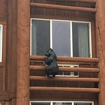 Kelly Inn West Yellowstone 이미지