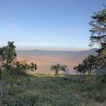 Lake Manyara Foto