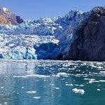 Foto van Adventure Bound Alaska Tracy Arm Glacier Cruise