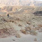 Photo of Timna Park