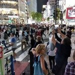 Foto de Shibuya Crossing