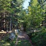 Sentiero delle Sorgenti fényképe