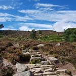 A Variety Of Walks - For All Levels