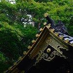 Φωτογραφία: Nikko National Park