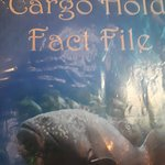Interesting Facts on the Fish in the Cargo Hold Tank