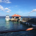 A view of the DIVI Dive dock with their Sea Gypsy dive boat