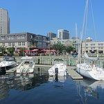 Small marina on the Halifax Boardwalk