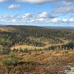 Photo de Riisitunturi National Park