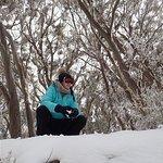 Mount Baw Baw의 사진