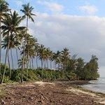 Bilde fra Uroa Bay