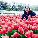 Photo de Wooden Shoe Tulip Farm