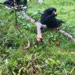Manor Wildlife Park Photo