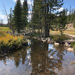 Medicine Bow National Forest照片