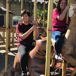 This was on the animal merry go round