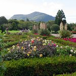 Muckross Garden at Killarney National Park