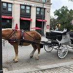 Foto 76 Carriage Company