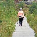 En promenad runt stora Delsjön I Göteborg är mycket rogivande