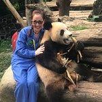 大熊貓保護研究中心都江堰基地照片