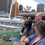 The city cat ferry.