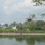 Photo of Ara Pond
