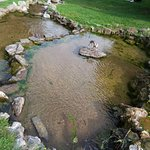 Foto Taman Valentino (Parco del Valentino)