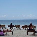 Photo of Kiwengwa Beach