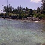 Zdjęcie Segway of Bermuda