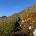 Reed Lakes Trail - Beginning Half