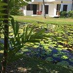 Sheraton Denarau Villas Photo