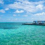 Foto van Playa de Spratt Bight