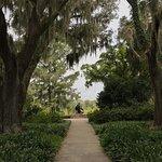 Diana through the Oaks