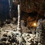 Фотография Florida Caverns State Park