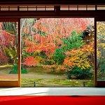 ภาพถ่ายของ สวนไทโซอิน