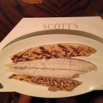 Scott'sの写真