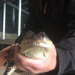 写真Ballarat Wildlife Park枚
