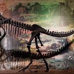 Foto Dinosaur Isle