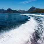 Foto van Bella Jane Boat Trips & AquaXplore