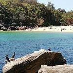 Photo of Shelly Beach