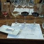 Photo of Spier Wine Farm