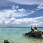 海洋之星安德曼一日游照片