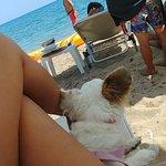 Φωτογραφία: Πανδαισία Beach Bar